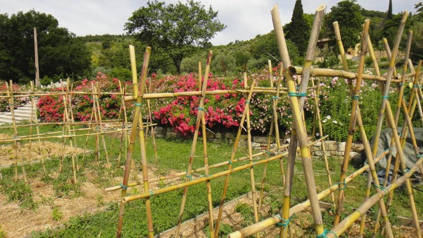 Un permis pour jardiner en ville à Chambéry