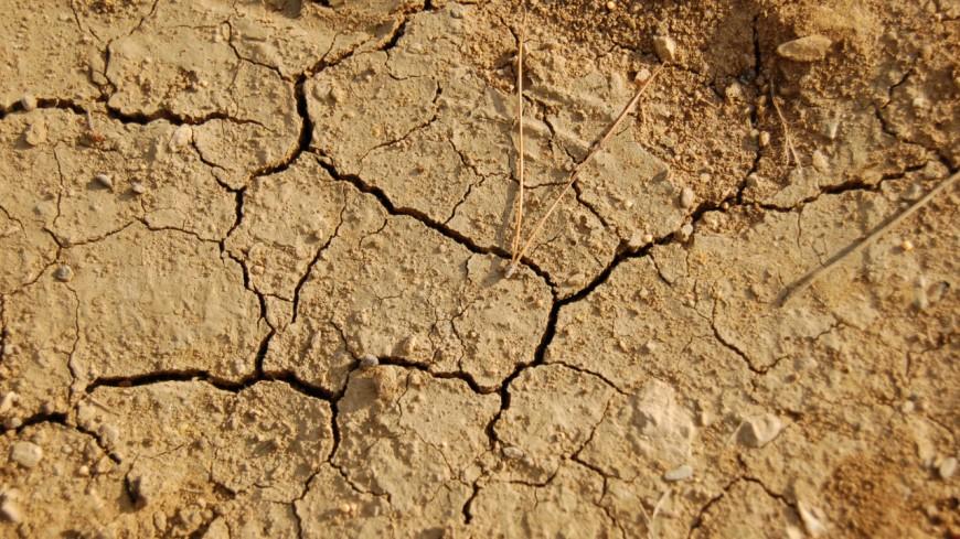 La sécheresse touche déjà la région