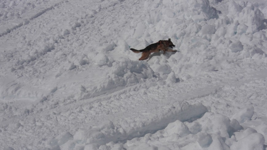 Nouvelle avalanche mortelle en Savoie