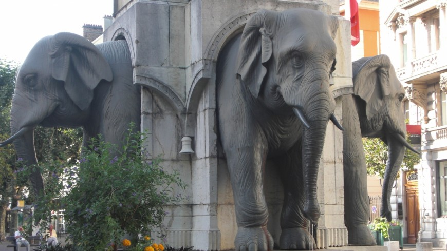 Chambéry : les vêtements des éléphants retrouvés