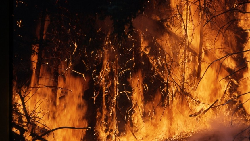 Un poids lourds en feu à hauteur des Houches