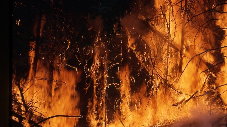 Un feu de tourbe jeudi après-midi