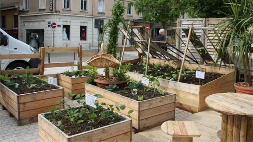 Un jardin éphémère inauguré à Seynod